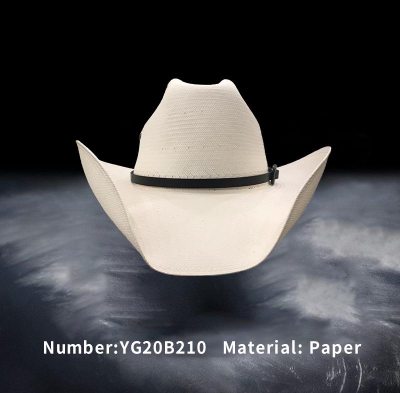 纸帽(YG20B210)